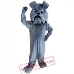 Grey Bulldog Dog Mascot Costume