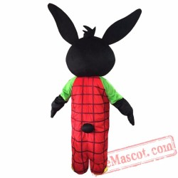 Balck Rabbit Mascot Costume