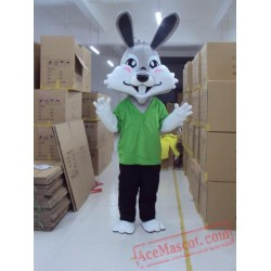 Green Coat Easter Bunny Rabbit Mascot Costume