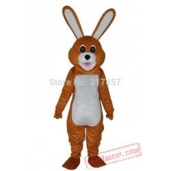 Brown Lovely Rabbit Mascot Costume