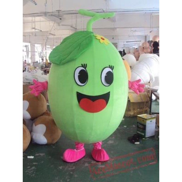 Fruits Vegetables Mascot Costume Role Playing Cartoon