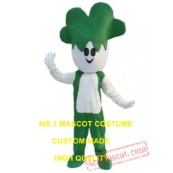 Cabbage Vegetable Mascot Costume