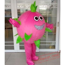 Dragon Fruit Mascot Costume
