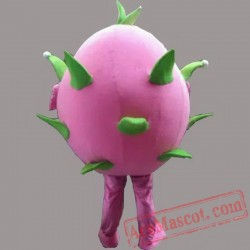 Dragon Fruit Mascot Costume Fruit Cartoon