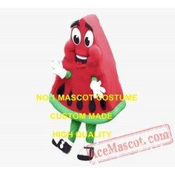 High Quality Watermelon Mascot Costume