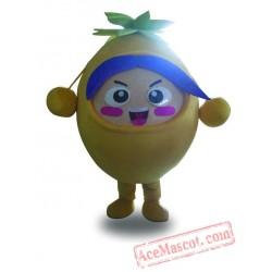 Professional Orange Fruit Mascot Costume