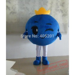 Crown Blueberry Mascot Costumes