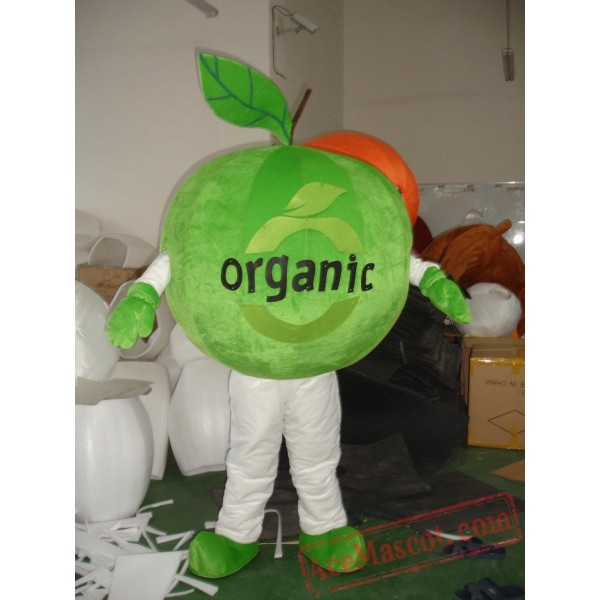 Adult Cute Green Fruit Mascot Costume