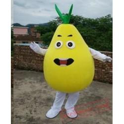 High Quality Shatian Pomelo Mascot Costume