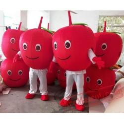 Red Apple Mascot Costume Fruit Cartoon