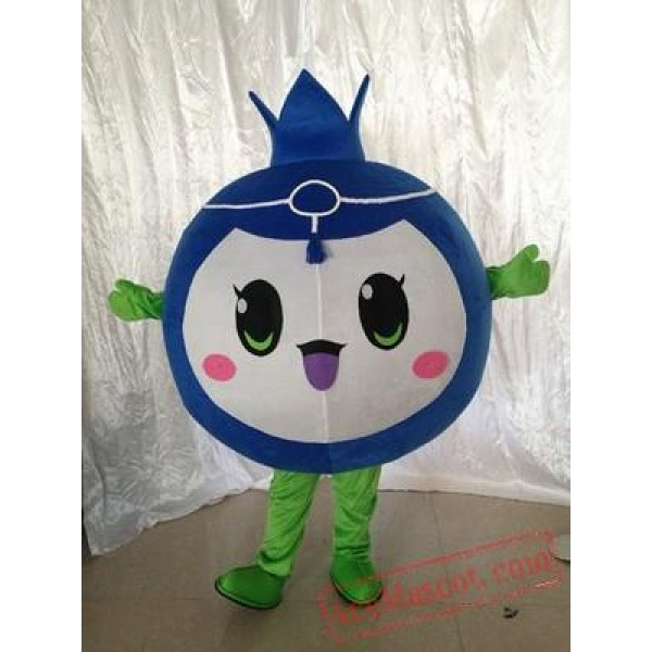 Blueberry Mascot Fruit Costume Suit