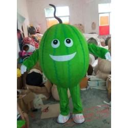 Melon Mascot Costume Fruit Cartoon
