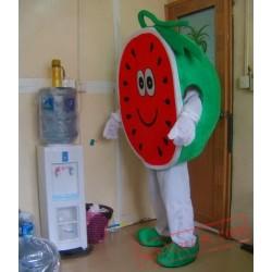 High Quality Sweet Melon Mascot Costume Fruit Cartoon