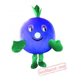 Professional Lovely Fruit Mascot Costume