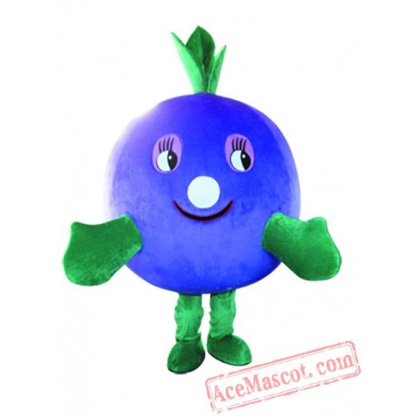 Fruit Mascot Costume