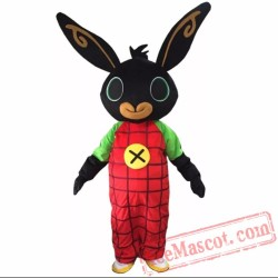 Bing Rabbit Mascot Costume