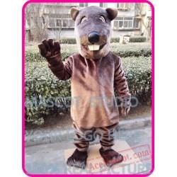 Beaver Sinocastor Castor Mascot Costume