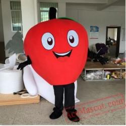 Apple Cartoon Mascot Costume